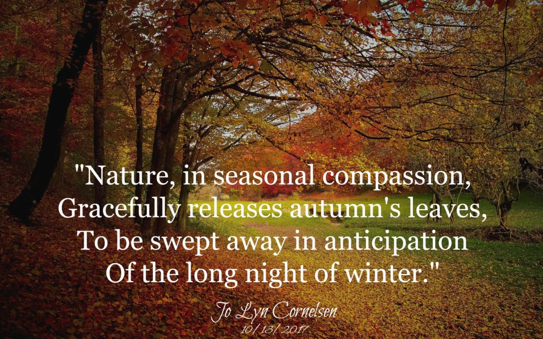 Seasonal Compassion