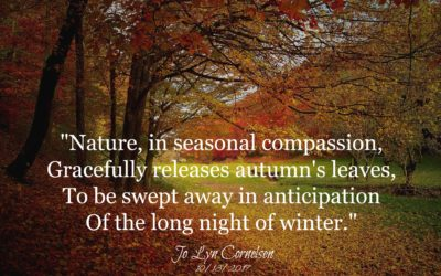 Seasonal Compassion