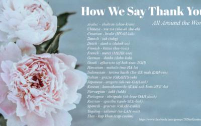 28 Day Gratitude Practice